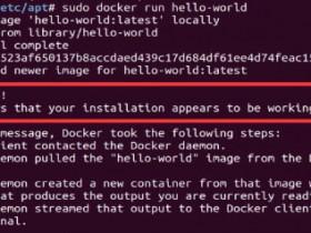 Ubuntu 18.04安装Docker教程及常见问题